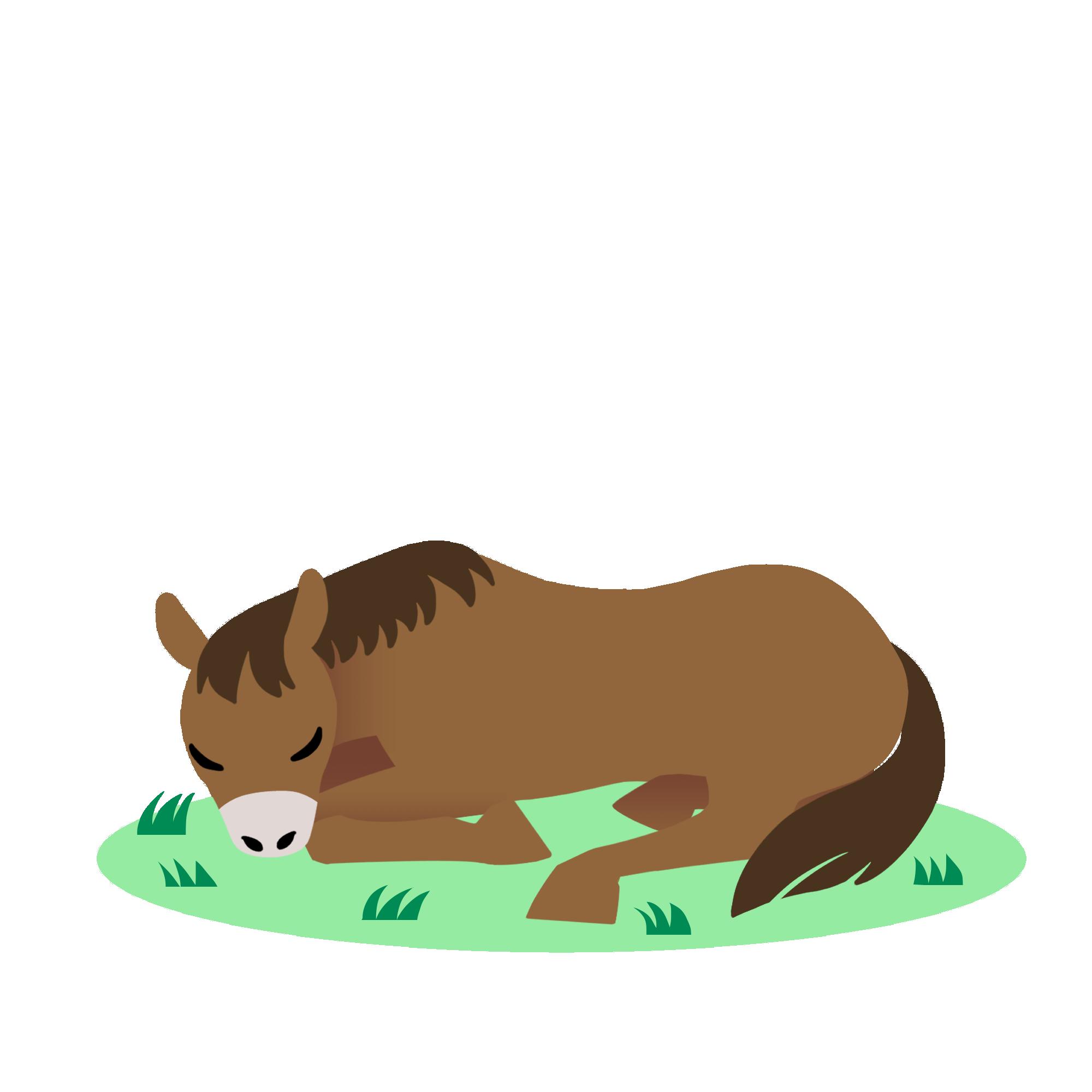 眠る栗毛の馬
