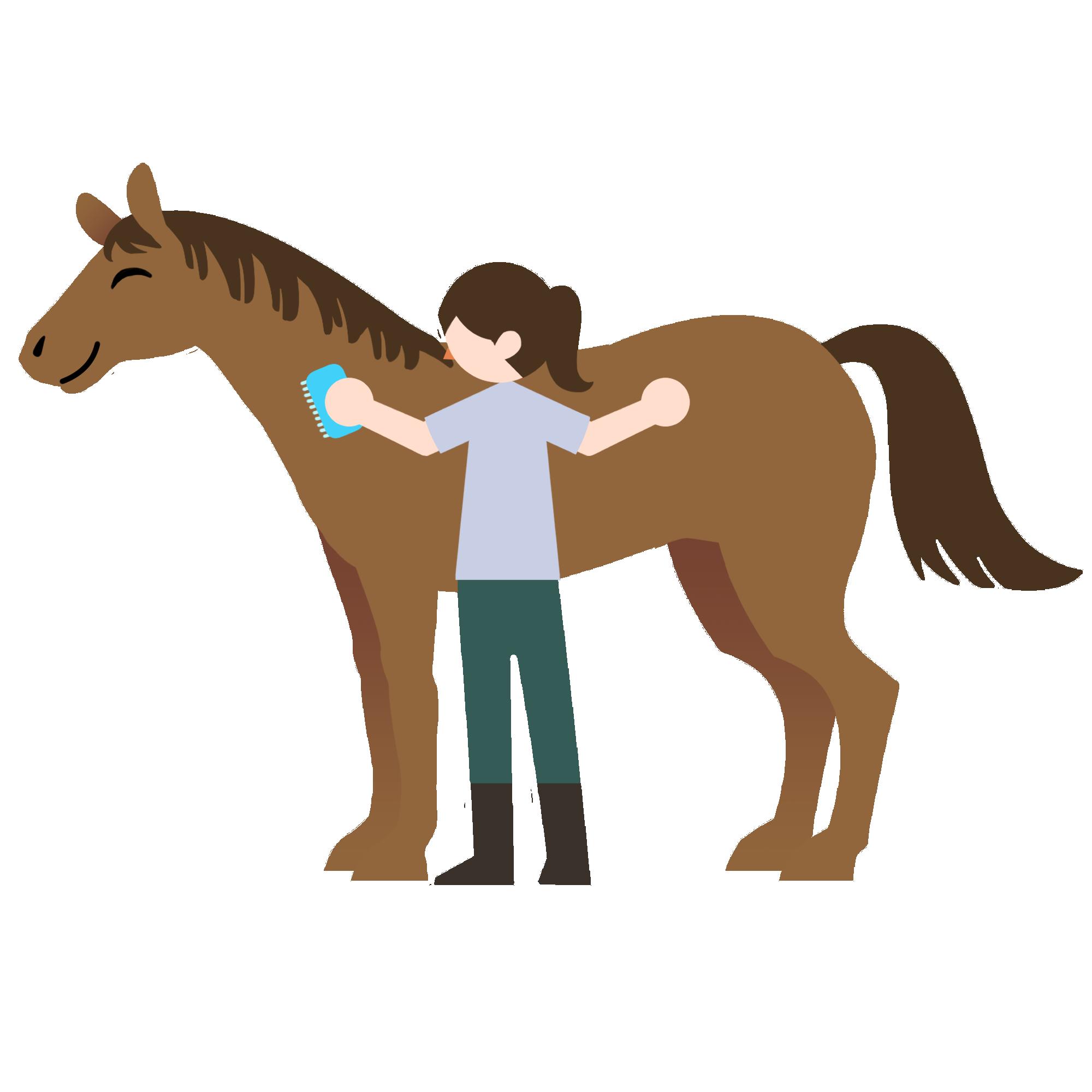 ブラッシングされる馬
