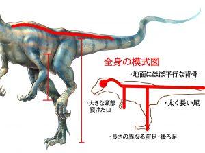 恐竜模式図